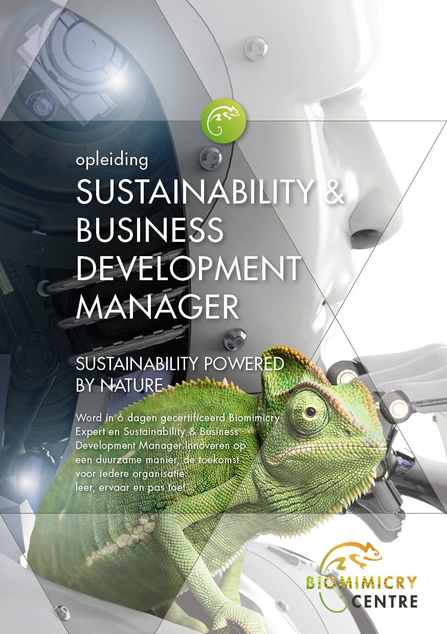 Sustainability Business Development Manager